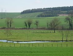 Campagne en Champagne-Ardennes